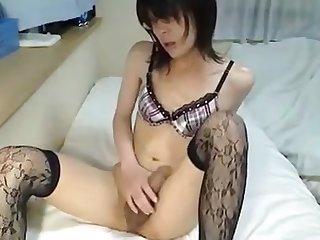 most assuredly dispirited japanese ladyboy cums for us